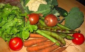 This weeks veggies