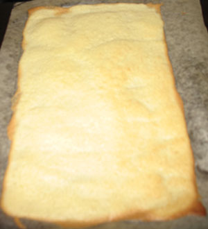 cooked_sponge_layer