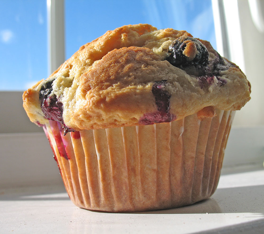 Lemon and Blueberry Muffin